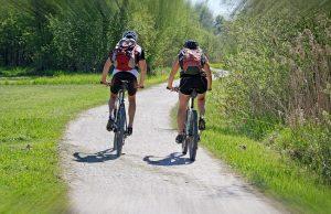 Cyclotourisme au bord des arbres
