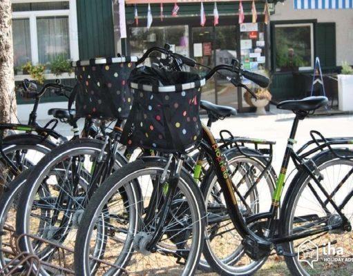 Vélo électrique (VAE) et batterie électrique