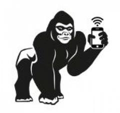 Gorille connecté pour les Gorille Cycles