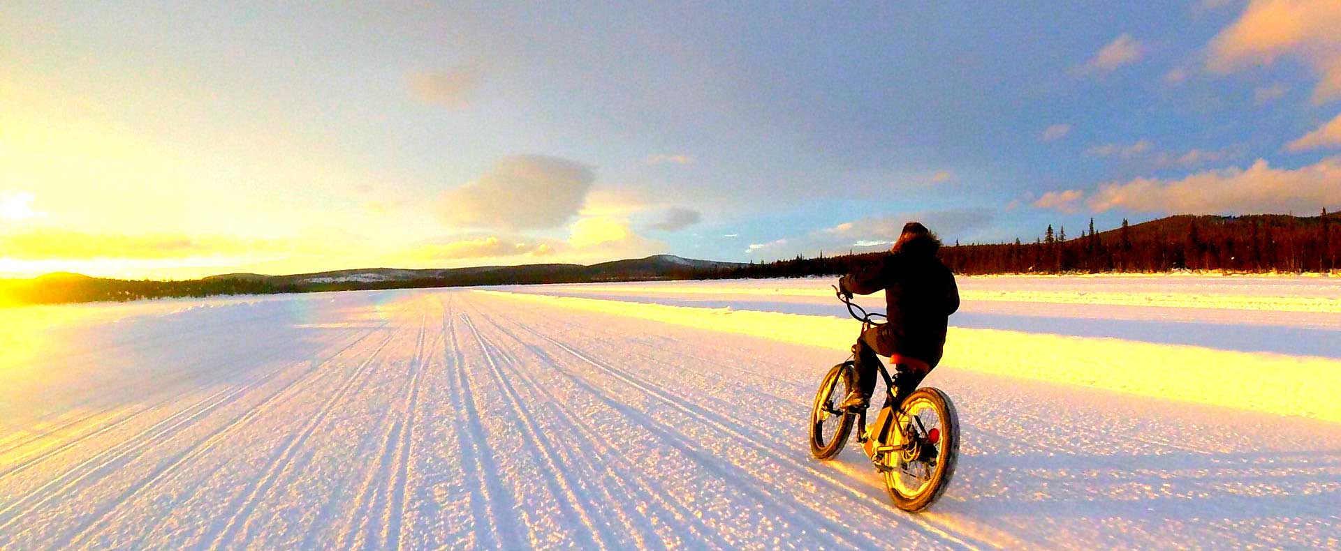 Cruiser sur neige : vélo par Gorille Cycles
